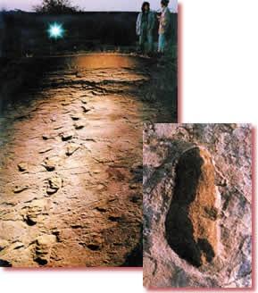 Footprint of laetoli